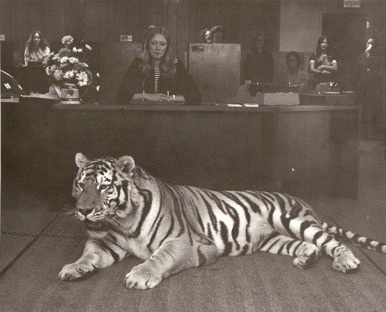 Umbert_Czar the Tiger_1973