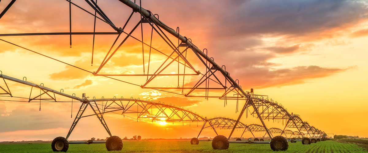 Agribusiness challenges