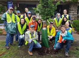 go-green-with-your-volunteer-hours