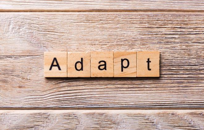 adapting business