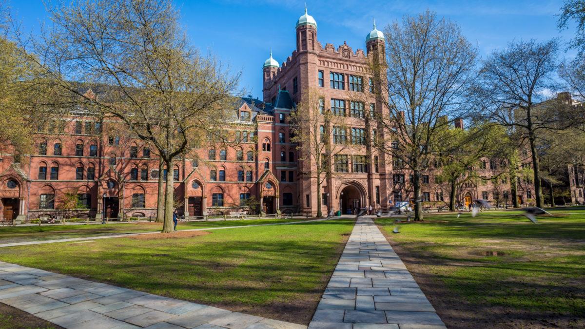 high education, buildings, campus